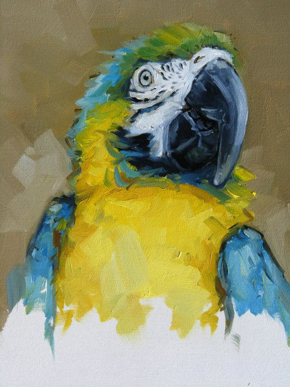 Original oil painting of Blue & Gold Macaw by John Payne