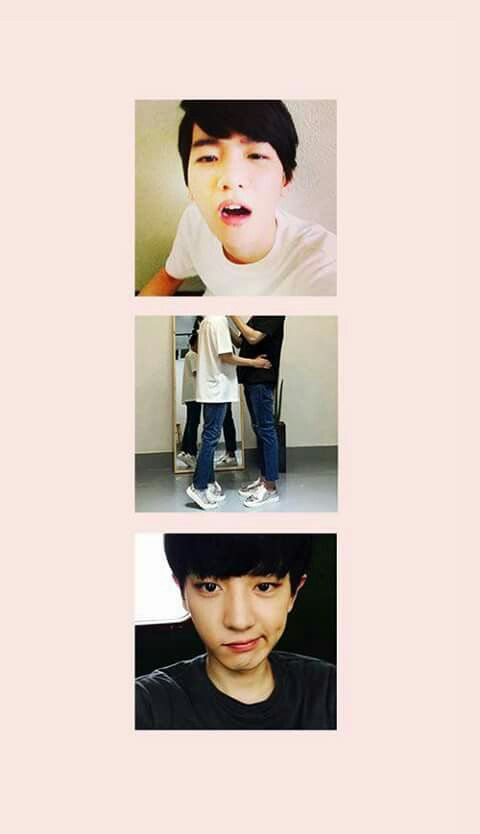 Wallpaper Exo Exo Exo Exo Ot12 Exo Chanyeol