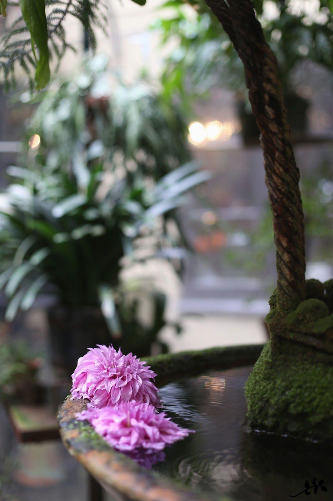 Tage Andersen - kukkagalleria Kööpenhaminassa