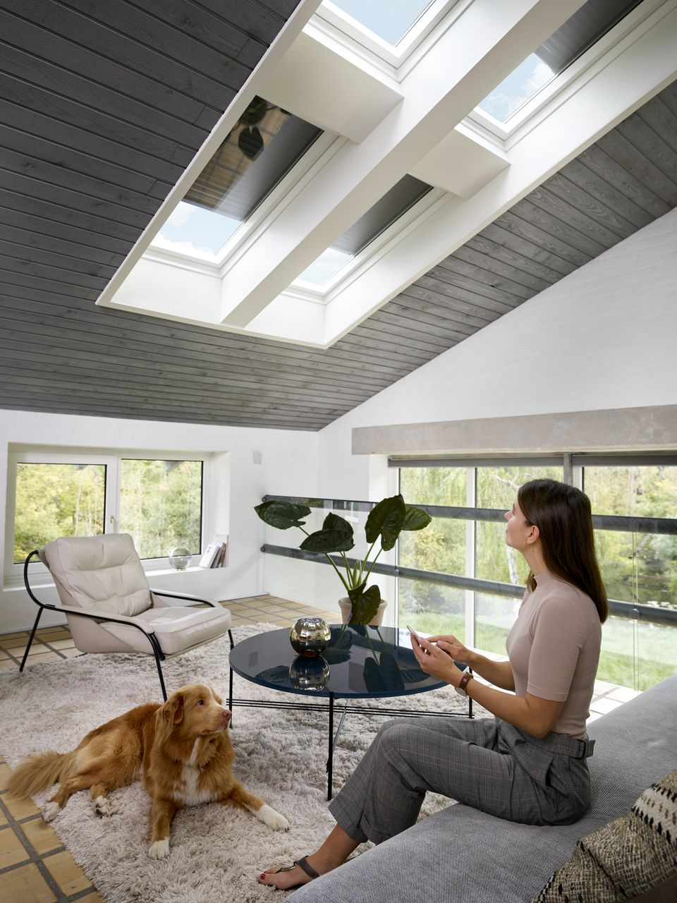 Velux Roof Windows Allow Plenty Of Natural Daylight In While