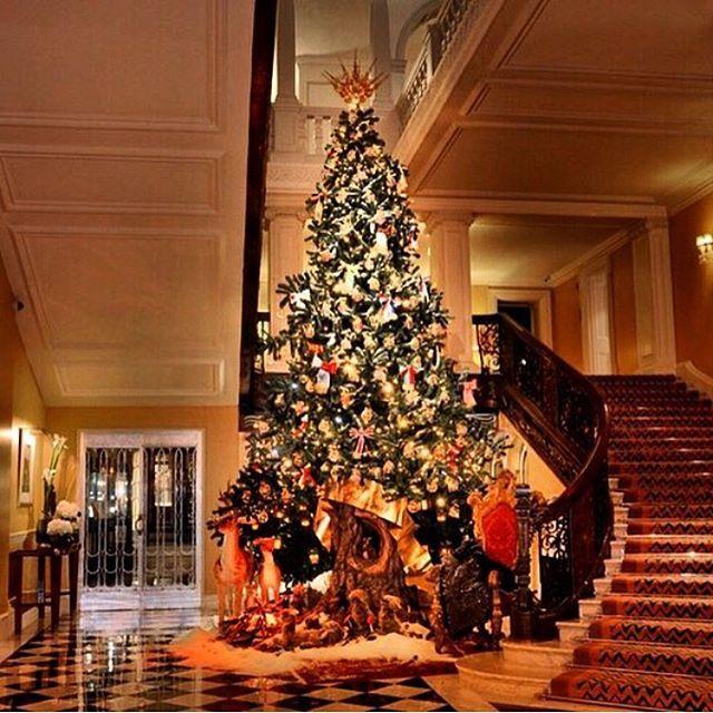 🎄🌟🎄🌟🎄 #christmas #merrychristmas #christmastree #christmastime #snow #FF #followback #L4L #christmas