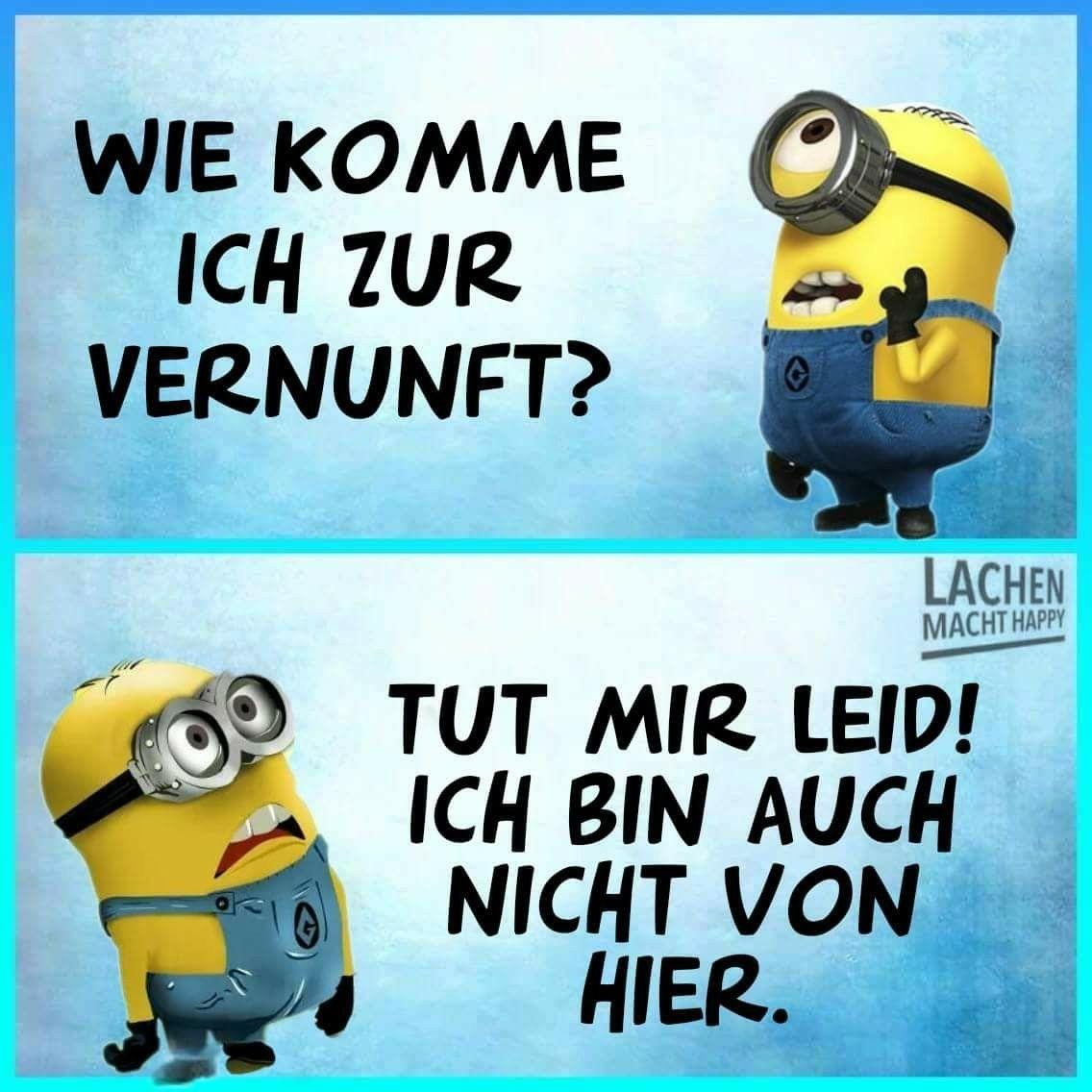 Pin By Patricia Oosterveen On Humor Witze Humor Bilder Sprüche