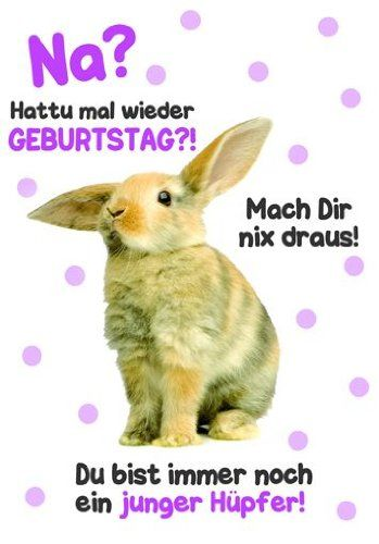 Karte Geburtstag Motiv Tierisch Gut Drauf Lustig Freche Spruche Mit