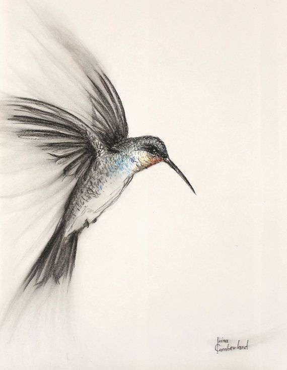 Original Bird Art Charcoal Drawing Of A Flying By IrinaCumberland | For The Home | Pinterest ...