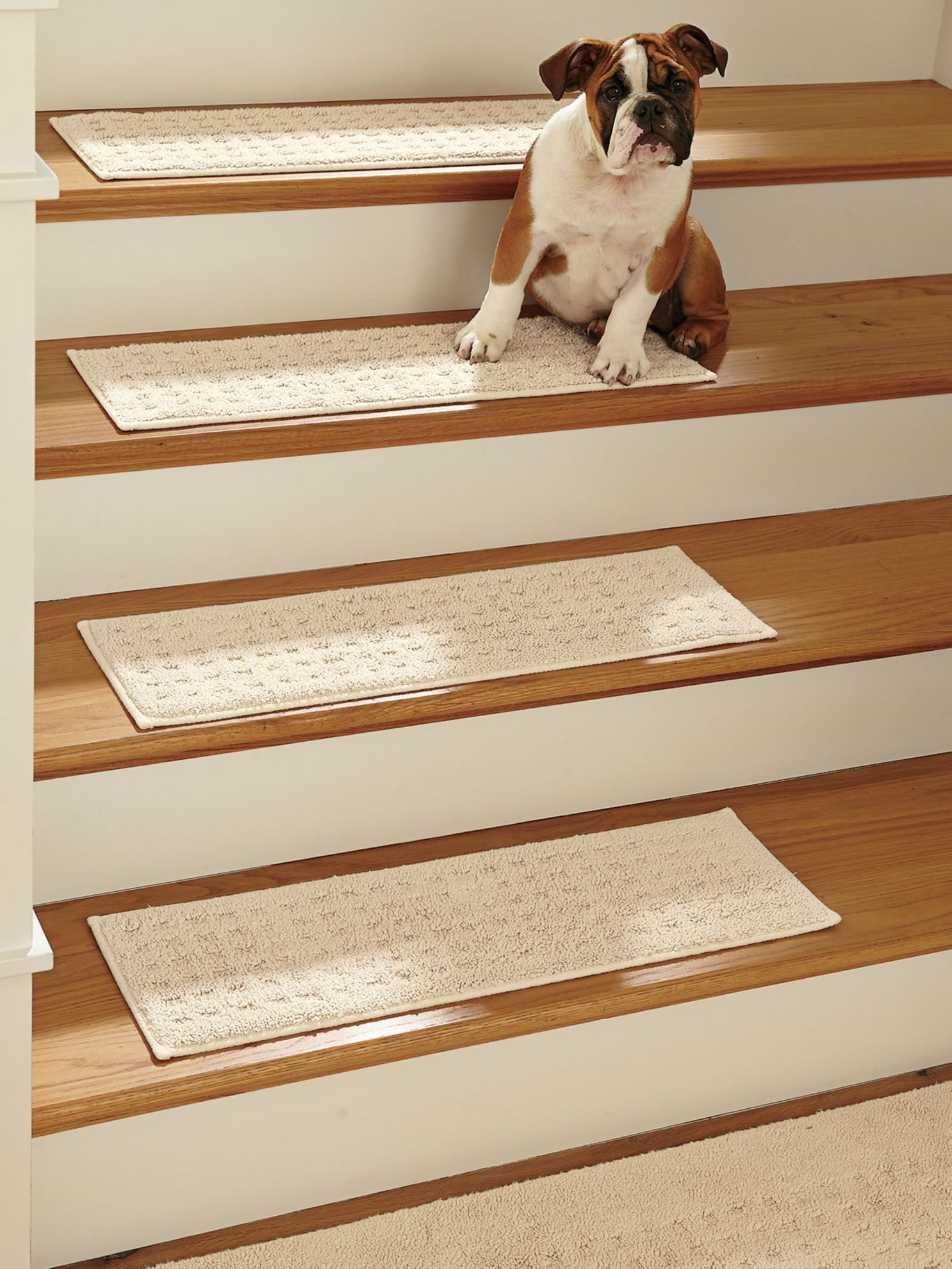 Protect Wooden Stairs From Wear With Vista Stair Treads From Solutions.  Shop Pure Cotton Stair Treads For Practical Comfort In A Machine Washable  Design!