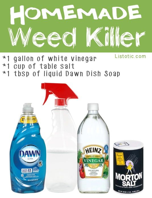 Organic Homemade Weed Killer for Getting Rid of Poison Ivy