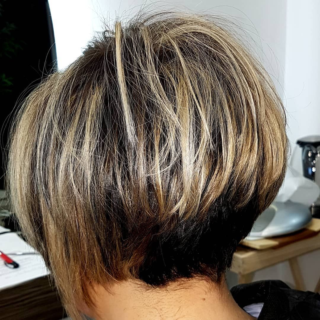 hairstyle #cambiolook #hairdo #haircolors #pigment #zoneconcept #illuminate  #shine #co… | Layered haircuts for women, Short layered haircuts, Short bob  hairstyles
