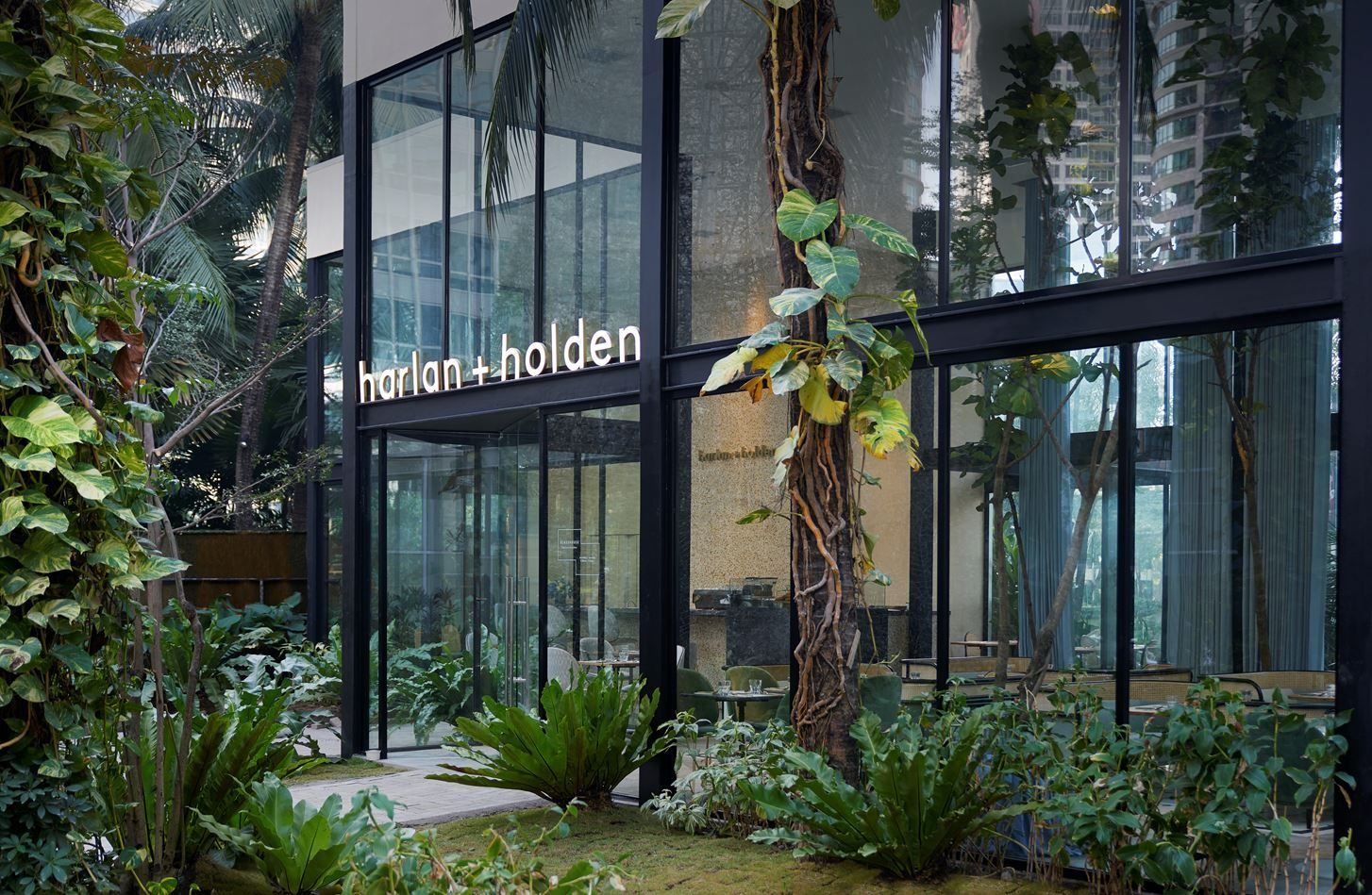Harlan+Holden Glasshouse Café Picture gallery
