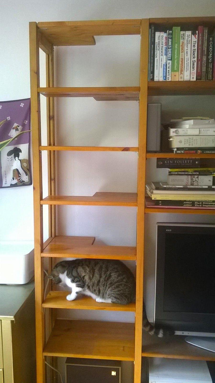 INDOOR CAT LADDER Very easy to make hidden indoor cat