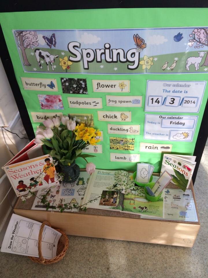 Spring Time Display Seasons Science Year One Ks1 Classroom My