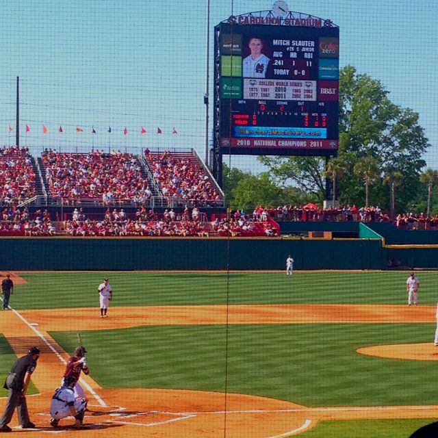 South Carolina Baseball South Carolina Gamecocks Baseball Baseball Camp South Carolina