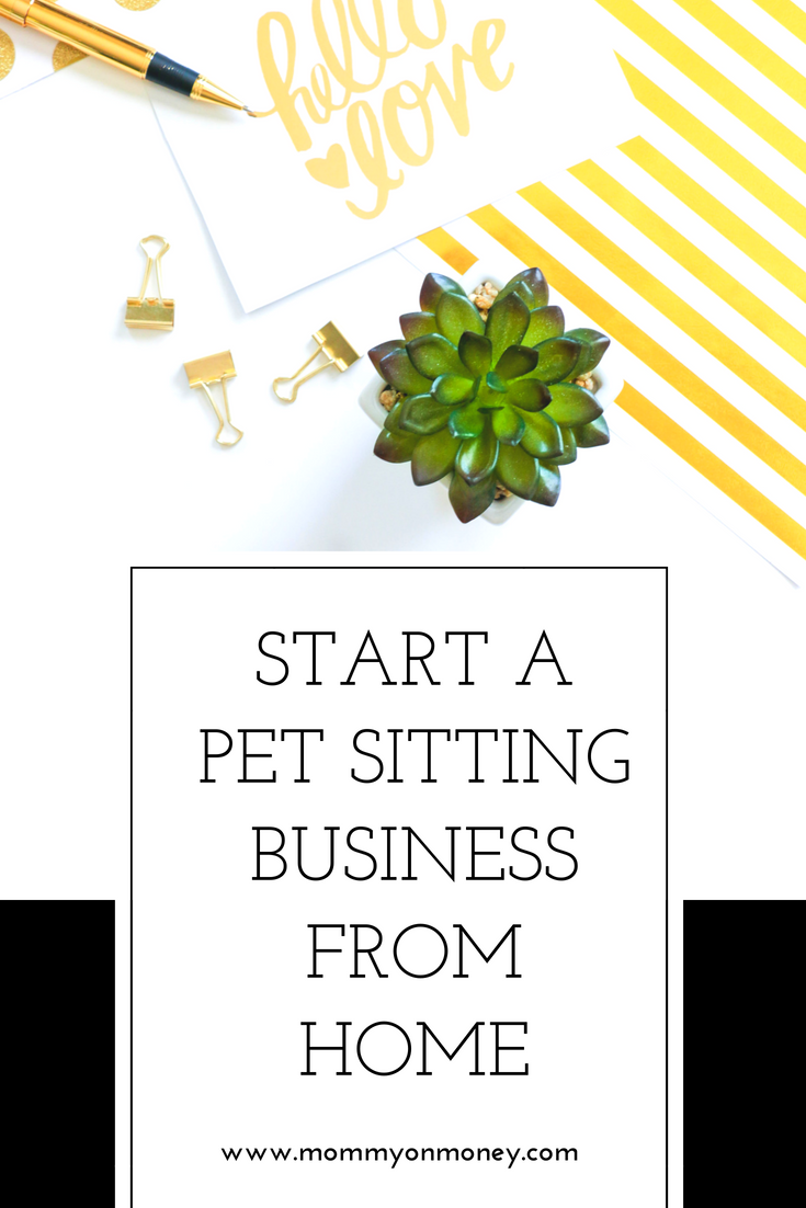How to Start a Pet Sitting Business pics