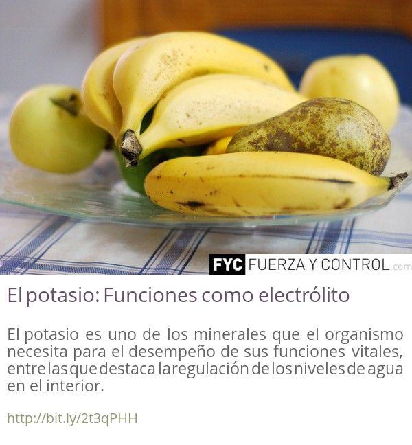 Funcion de los minerales en el organismo