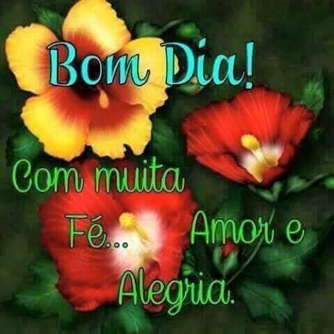 Bom Dia Com Muita Fe Amor E Alegria Bom Dia Com Flores