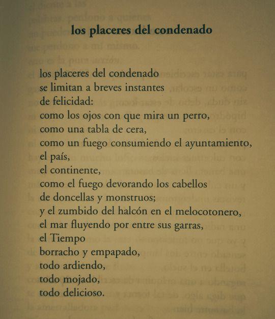 Poemas De Charles Bukowski Sobre El Amor Charles Bukowski Con Imagenes Frases Y Poemas Poemas