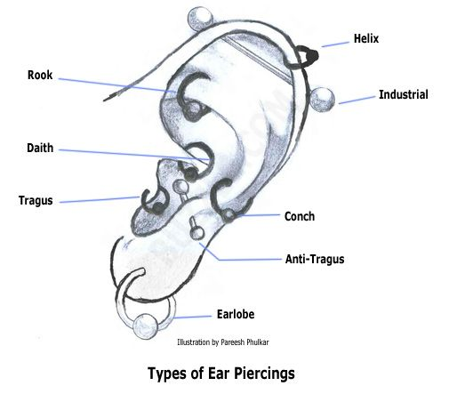 Mens ear piercing types