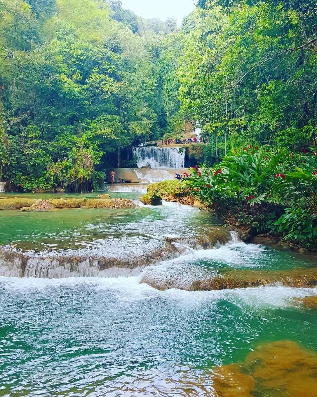 Ys Falls St Elizabeth Earthgarden Jamaica Beautiful Mrsmichybooduncan Kingston Jamaica
