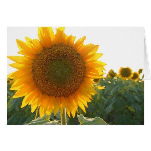 Sunflower heart card (blank)   Zazzle.com   Heart cards ...
