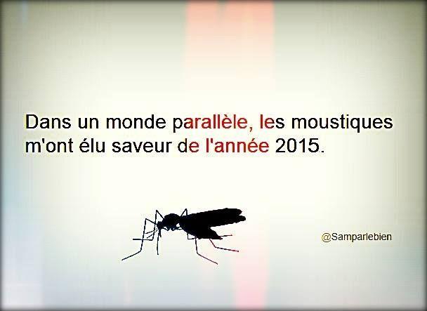 Souvenirs De Vacances Humour Drole Citations Les Plus