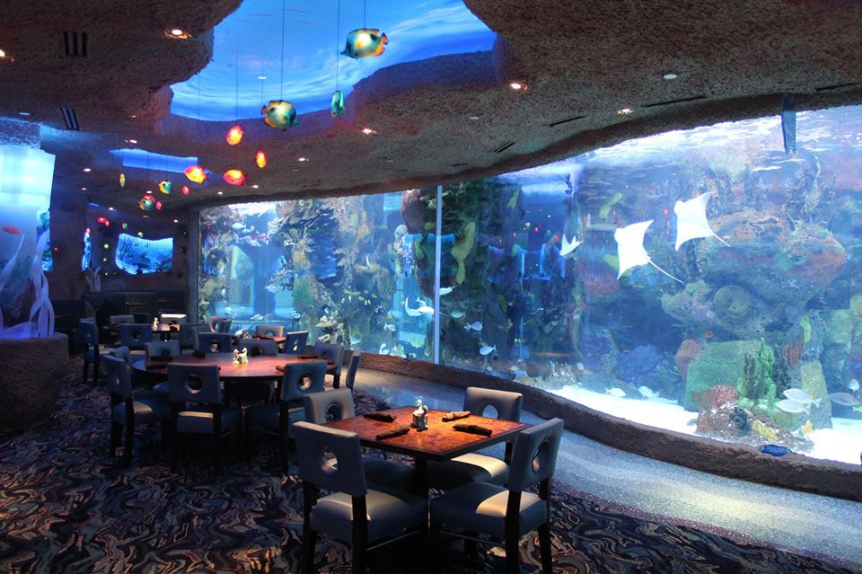 Aquarium restaurant nashville tn dining with a view for Best places for dinner in nashville