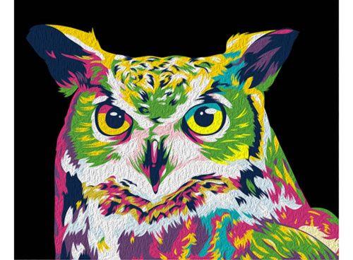 Картина по номерам «Радужная сова» | Картины, Разноцветные ...