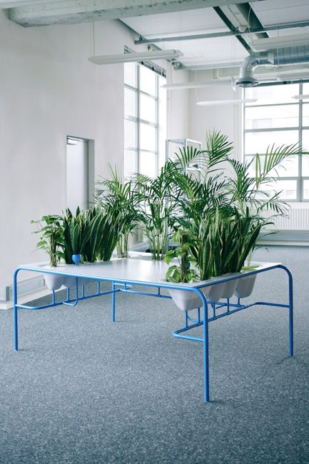Kind of an excessive version of the 'indoor plants' concept, but good inspiration.