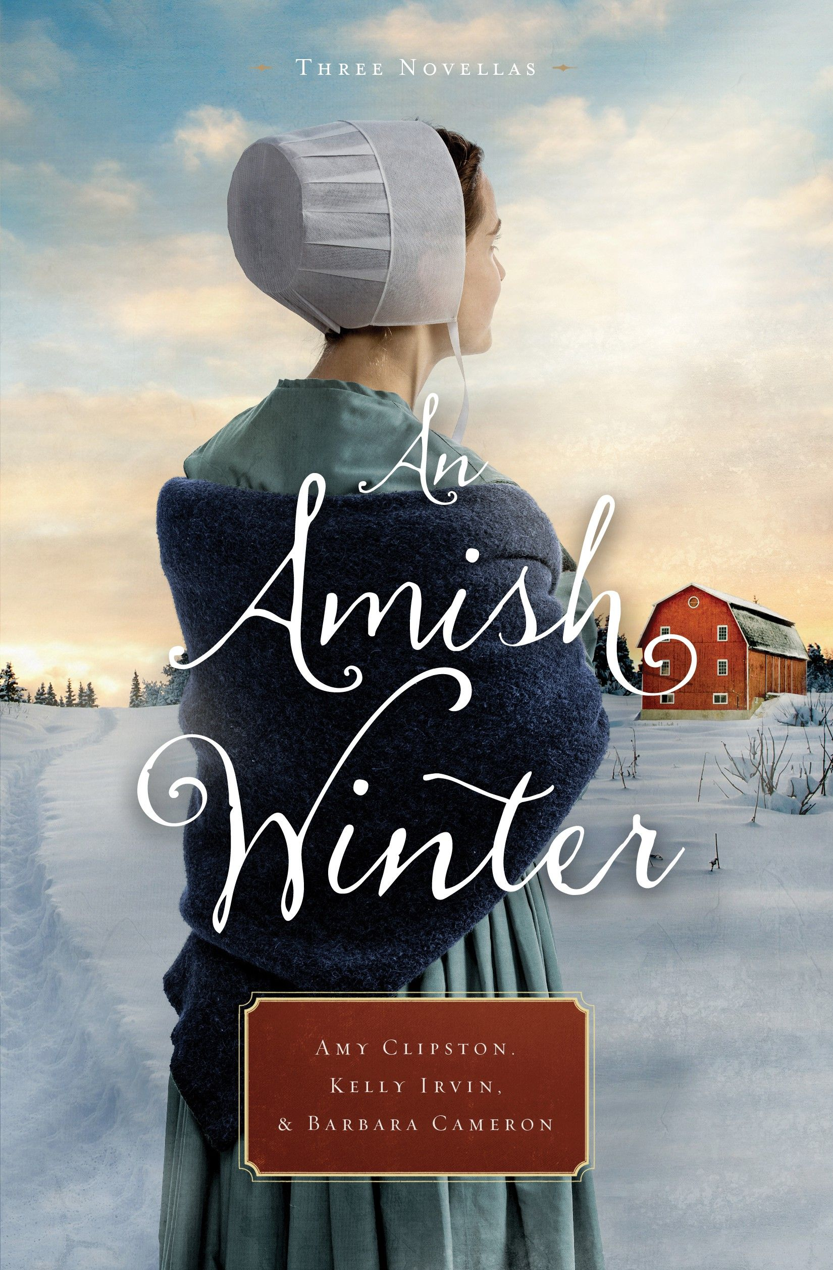 Amish Book Titles Sarah S Country Kitchen An Amish Winter By Amy Clipston Amish Books Holiday Romance Books Amish Fiction