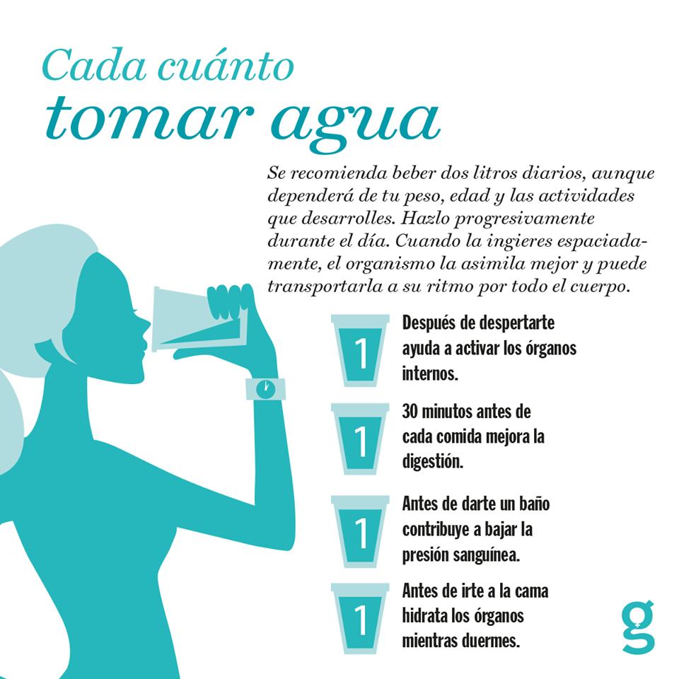 Cada Cuánto Debemos De Tomar Agua Consejos Para La Salud Habitos De Vida Ejercicios Para Adelgazar Muslos