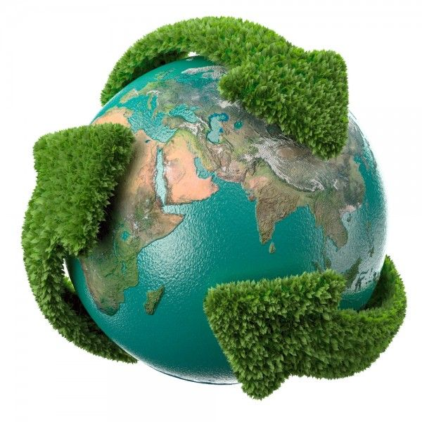 Imobiliaria Anderson Martins : Sustentabilidade: como aplicá-la em casa?