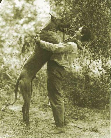 Harold Lloyd And His Pet Great Dane Prince Ca 1920s Harold