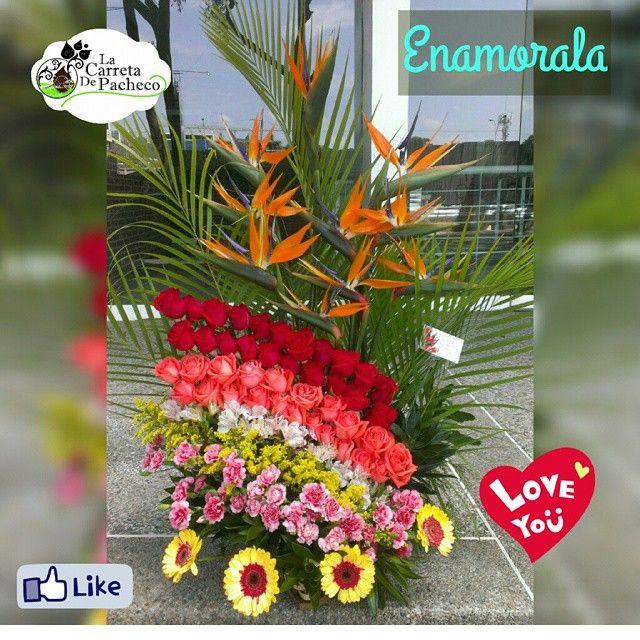 Enamorala. Contactanos al 0212.9594016 o 0414.3660316 al correo lacarretadepacheco@hotmail.com o acercate al #CCCT, nivel C1, frente a banesco express y con gusto te atenderemos #floresnaturales#floristeriaccct#floristeria#floristerialacarreta#lacarretadepacheco#rose#rosas#gerberas#obsequio#regalo#flores#FLOWERS#AMOR#insta#igersvenezuela#detalles#like4like#l4l#followme#VENEZUELAENFLORES#CARACAS#venezuela