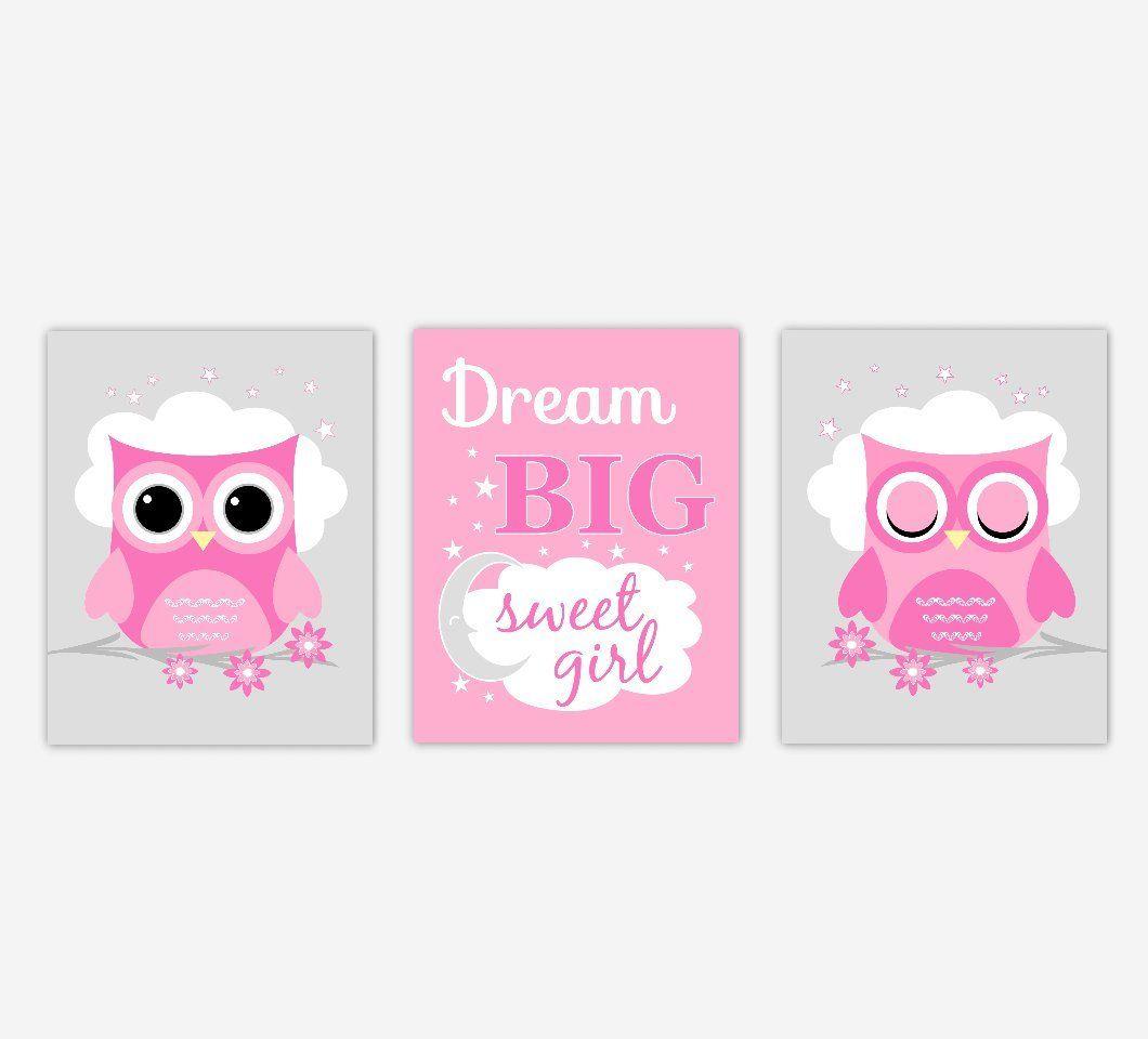 Baby girl nursery wall art pink gray owls dream big sweet girl baby