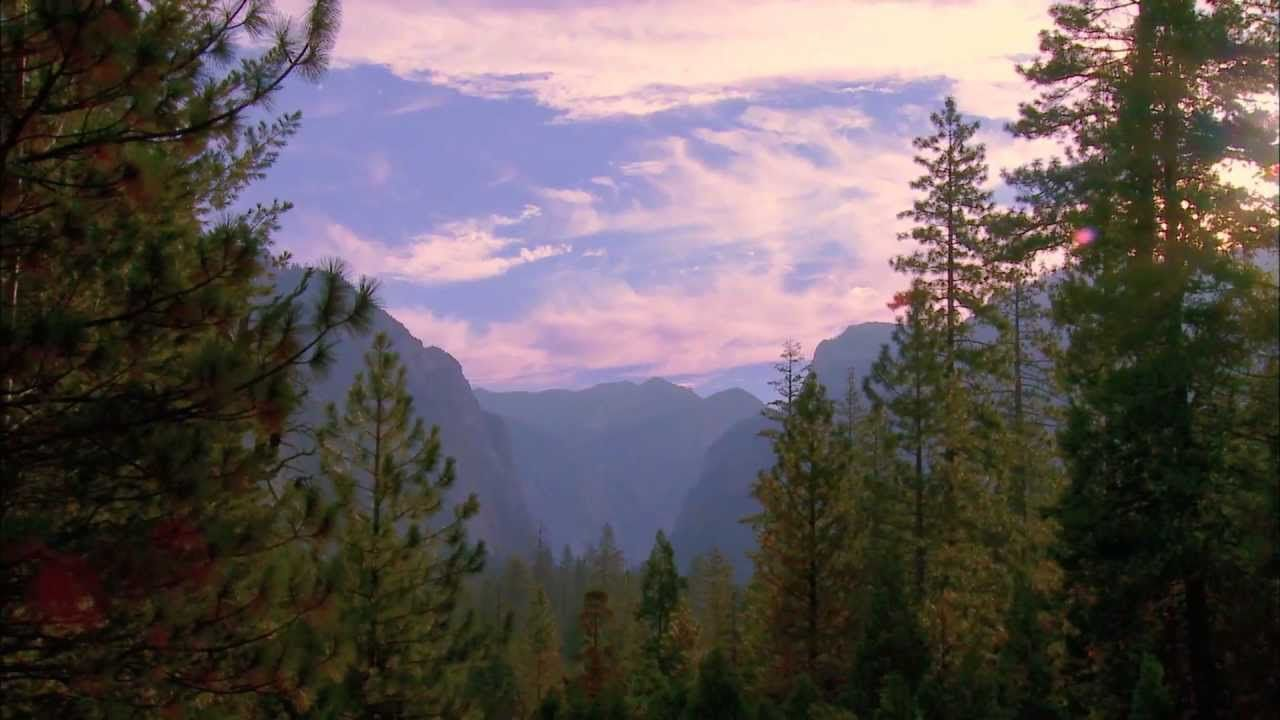 sequoia kings canyon national parks national parks sequoia rh pinterest co uk