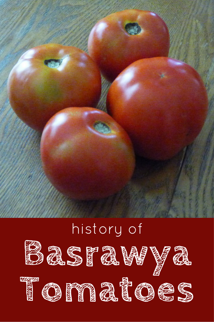 The History Of Basrawya Tomatoes - Gardening Know How's Blog