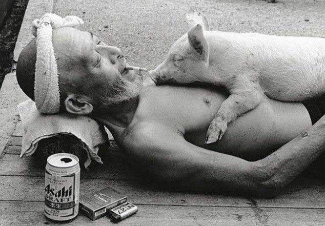 Resting on the street, smoking, drinking, and letting a pig sleep on your chest...