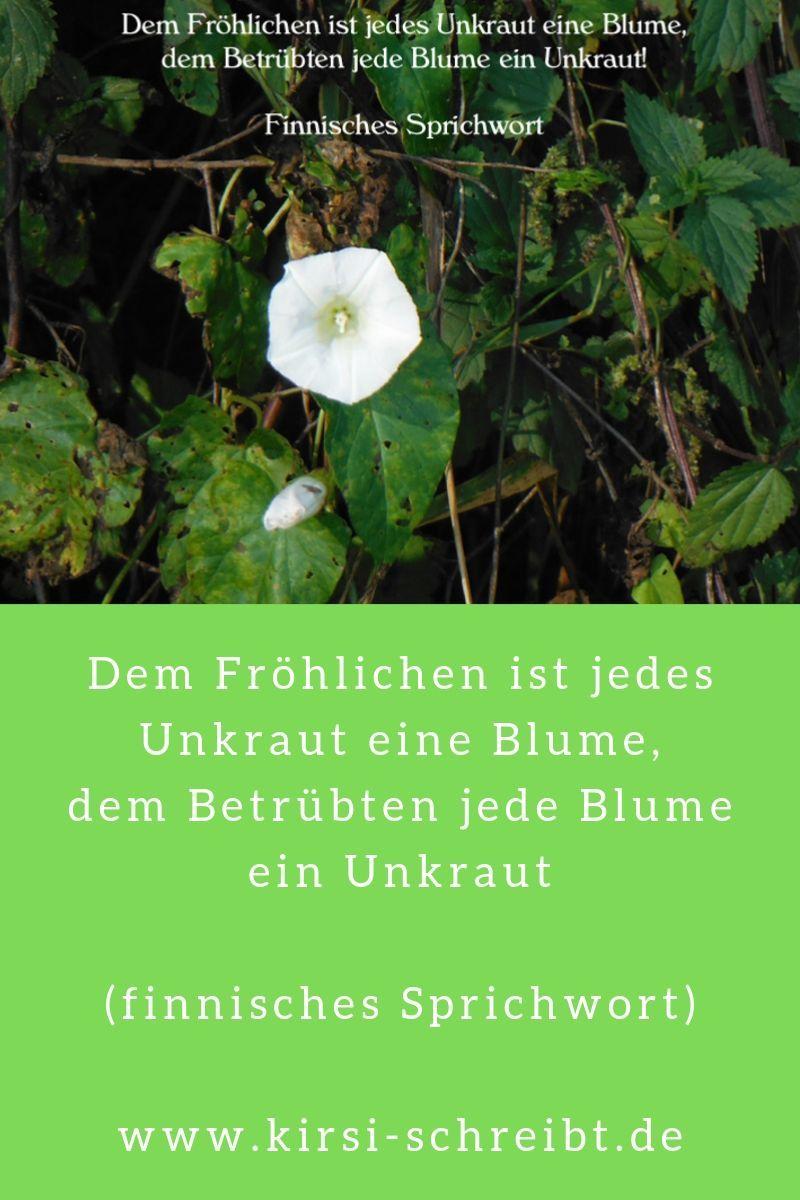 Unkraut Im Garten Ein Finnisches Sprichwort Meint Dazu Unkraut Im Garten Unkraut Jaten