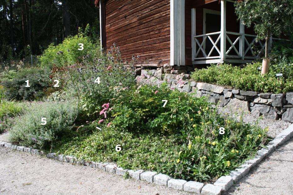 Suomalainen puutarha - kestävästi kaunis