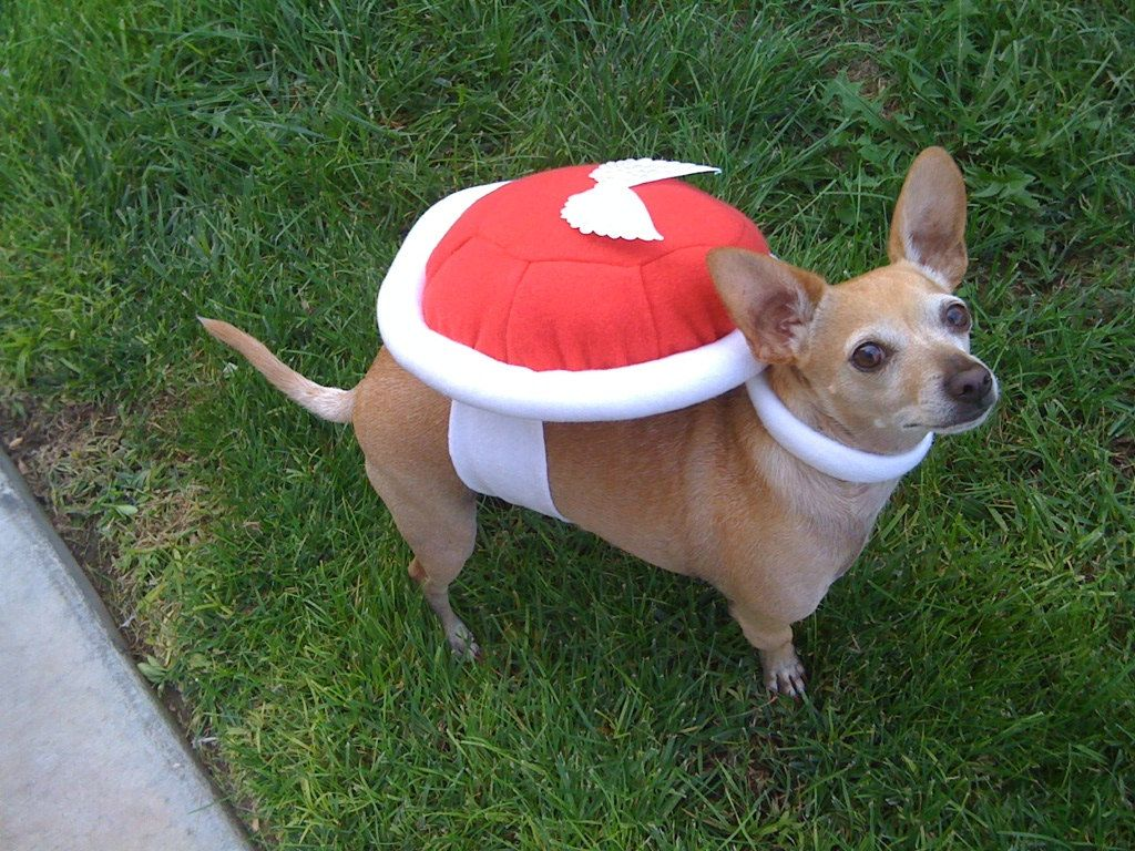 Image result for dogs dressed as nintendo