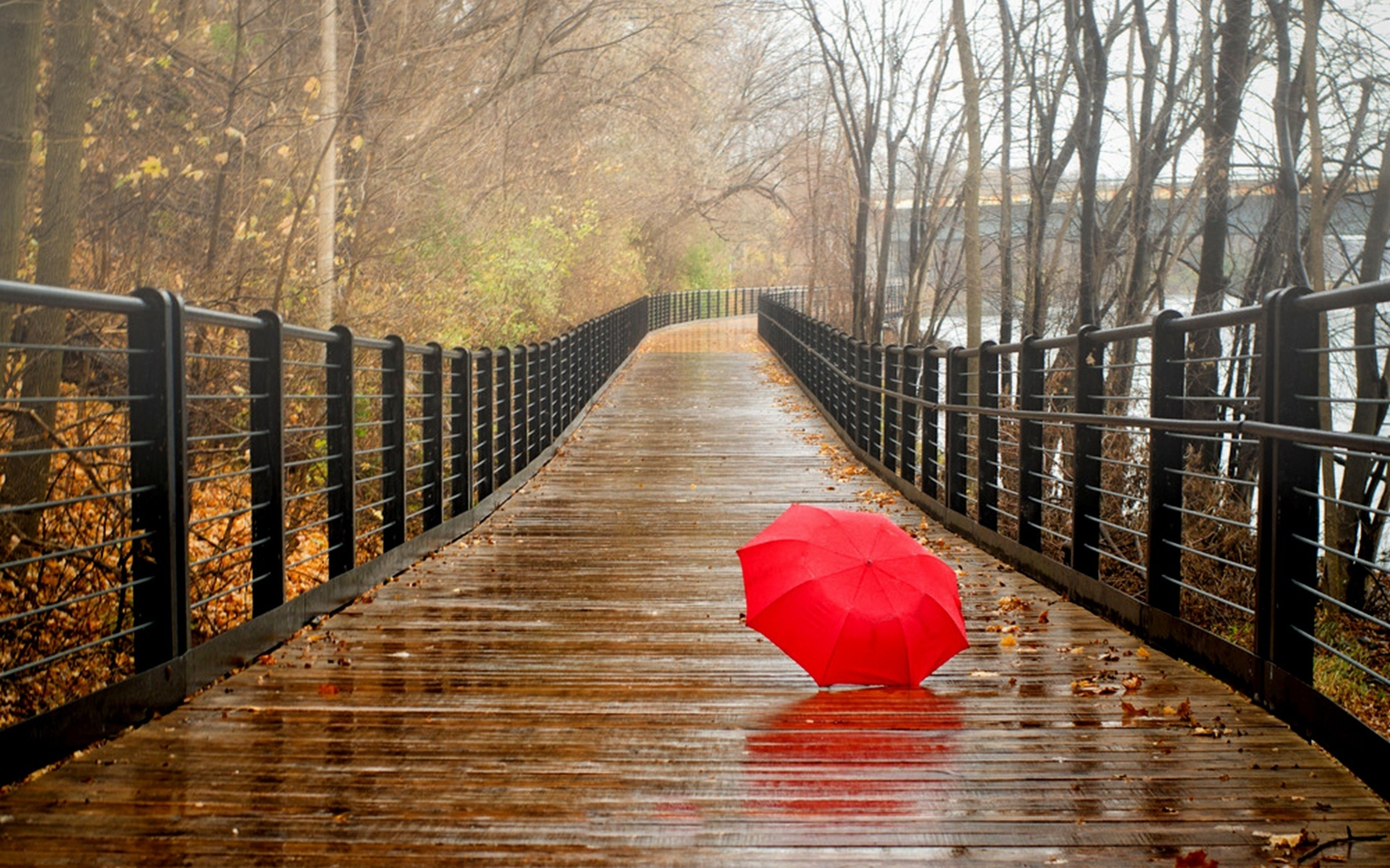 Rain over gray city - two girl with red umbrellas | Red ...