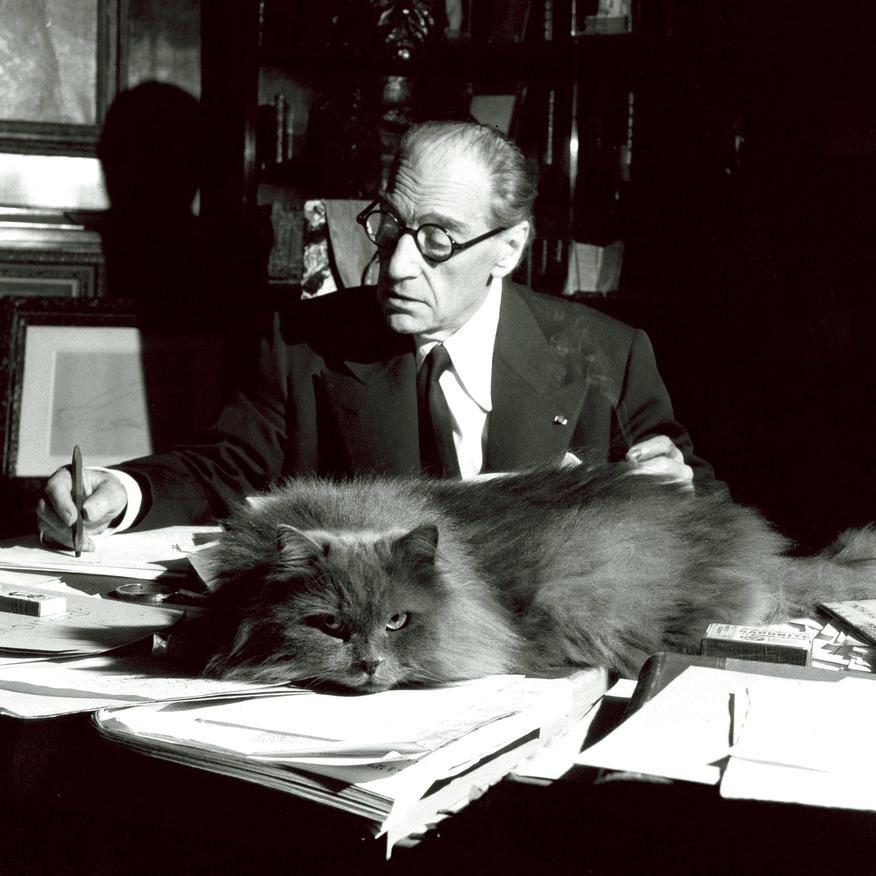 Sacha Guitry A Son Bureau 1955 Avec Images Chat Celebre Guitry Beaux Chats