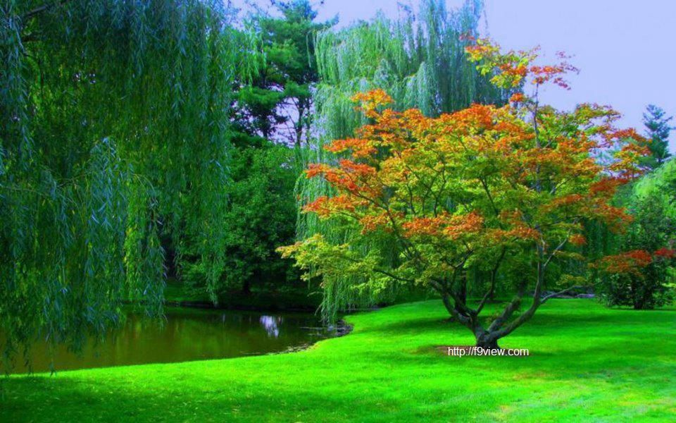 Download Natural Beauty Of Nature Mojmalnews Com Beautiful Nature Nature Wallpaper Beautiful Nature Wallpaper