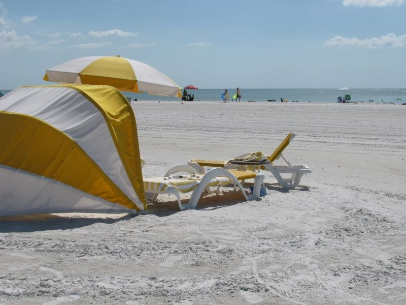Pin On Talk Of The Florida Gulf Coast