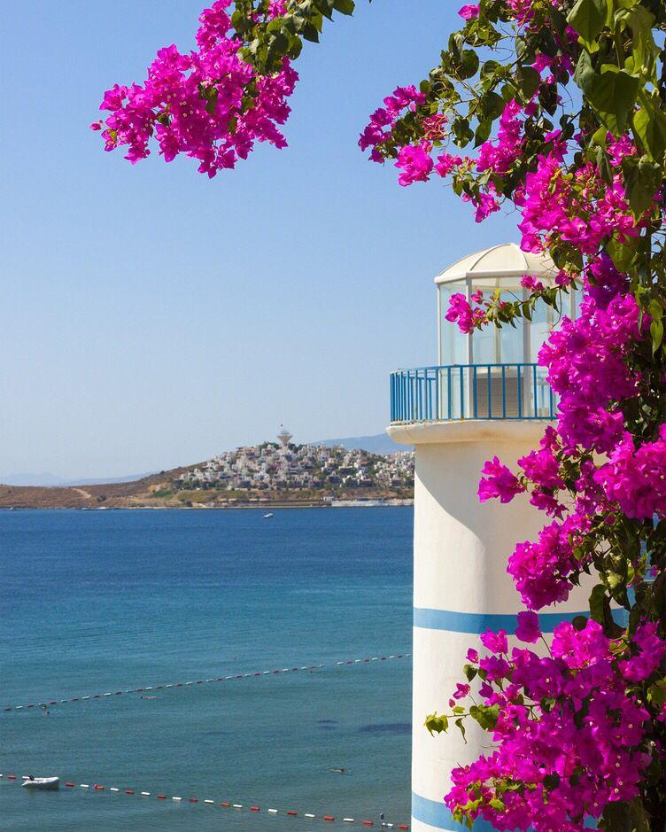 Ayrintilar Icin Biletcepde Follow4follow Followme Follow Like Love Happy Summer Sea Tatil Istanbul Holiday Friends
