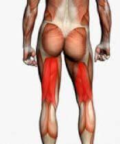 Épinglé sur Exercices pour perdre des hanches