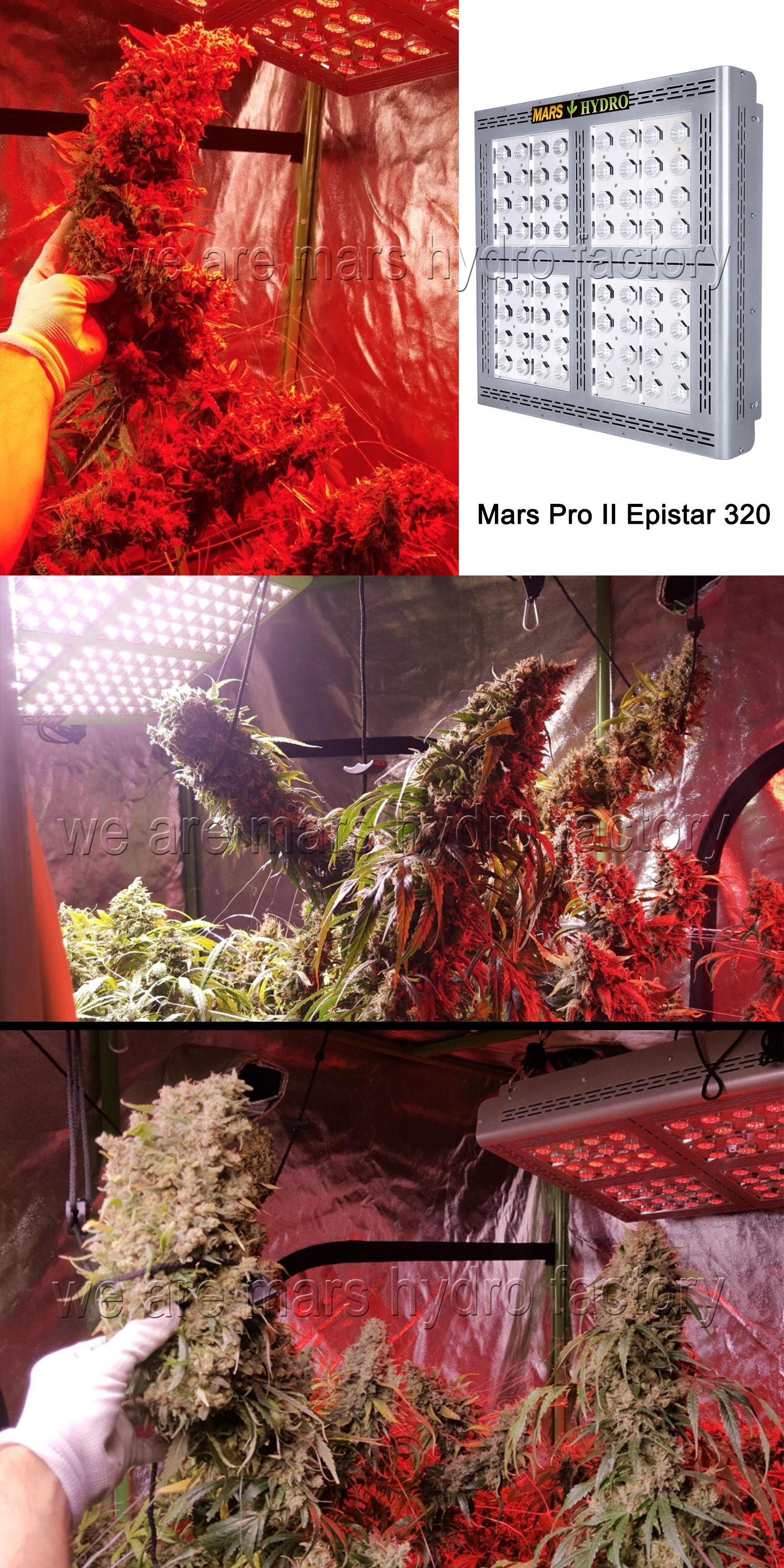 2 X Mars Hydro Ts 3000w Led Grow Light Full Spectrum Veg Bloom For Indoor Plants Led Grow Lights Grow Lights Best Led Grow Lights
