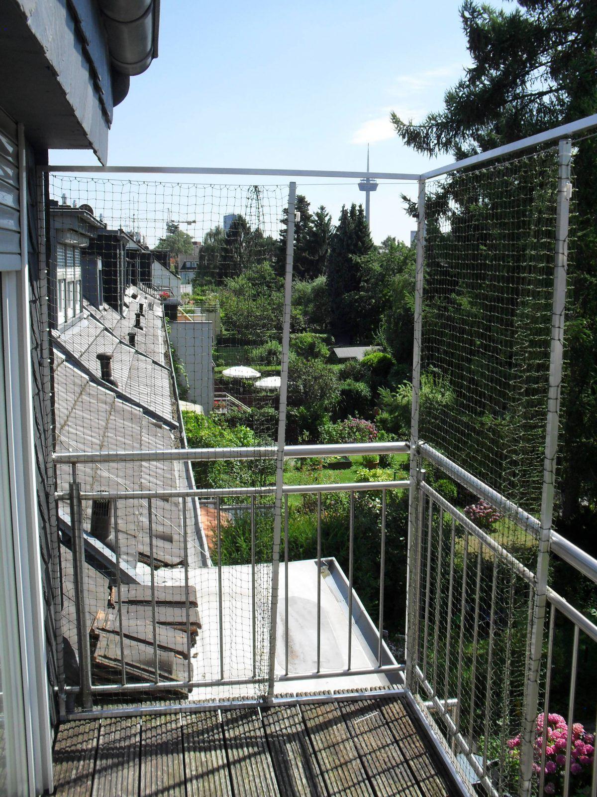 Katzennetz Zum Offnen Katzennetz Katzen Katze Balkon