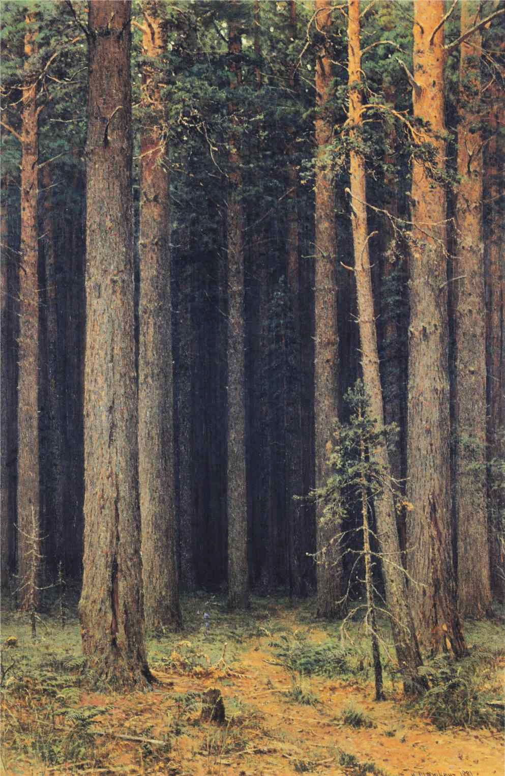 Forests Repro choose Canvas or Paper A Pine Forest by Russian Ivan Shishkin