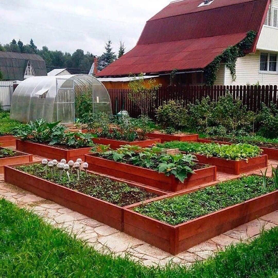 огород фото грядки клумбы кхан