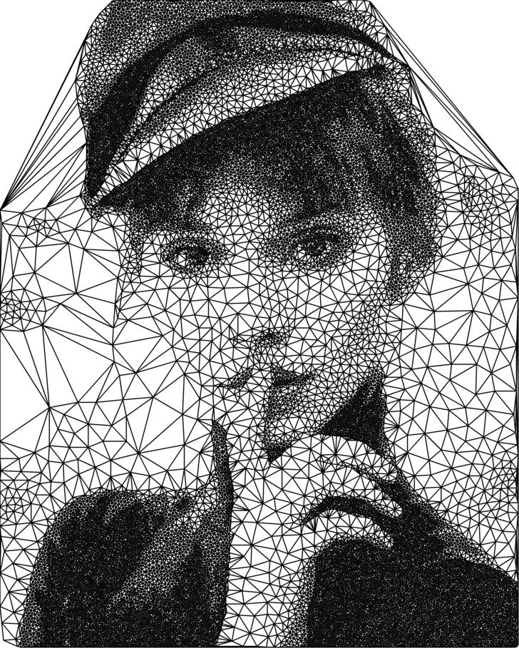 Different type of triangulation portrait