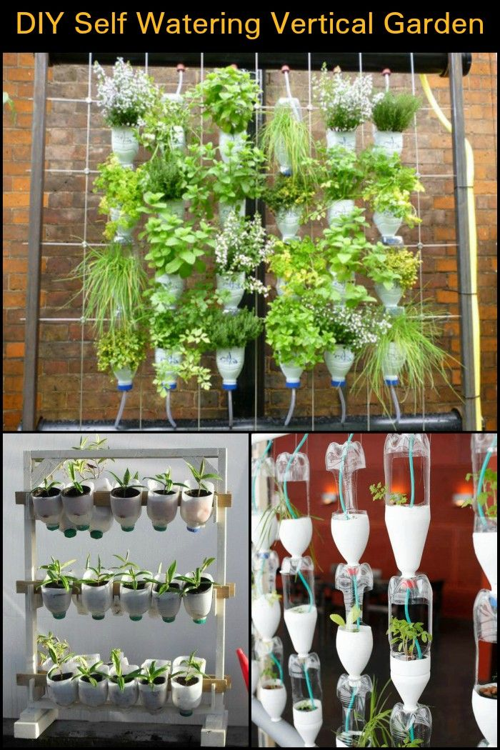 How To Build A Self Watering Vertical Garden From Recycled Plastic Bottles Vertical Herb Garden Vertical Garden Diy Vertical Vegetable Garden